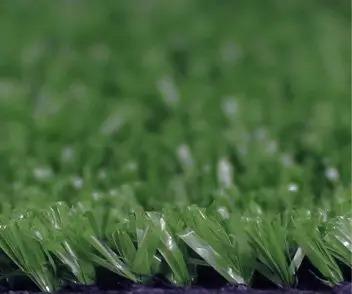 economical grass for landscape style PP070526A