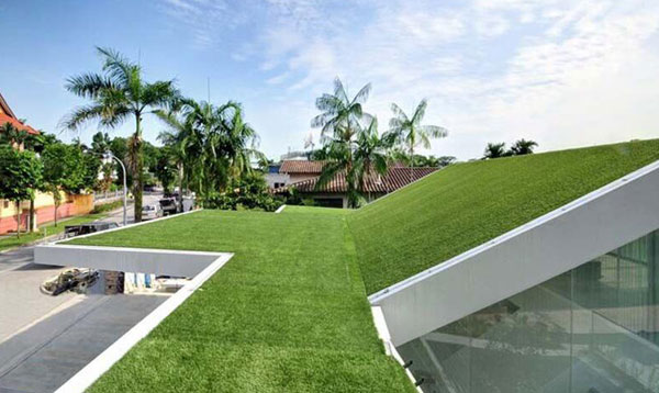 Applications of Artificial Boxwood on the Roof