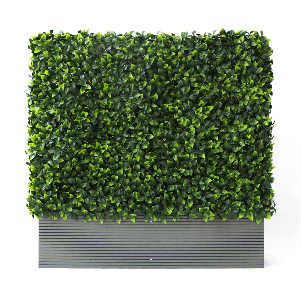 Privacy Green Wall in Planters